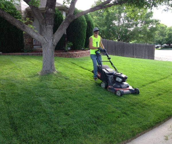 Lawn Service-Houston TX Landscape Designs & Outdoor Living Areas-We offer Landscape Design, Outdoor Patios & Pergolas, Outdoor Living Spaces, Stonescapes, Residential & Commercial Landscaping, Irrigation Installation & Repairs, Drainage Systems, Landscape Lighting, Outdoor Living Spaces, Tree Service, Lawn Service, and more.